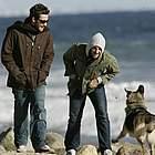 jake gyllenhaal beach28