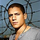 wentworth miller pictures04