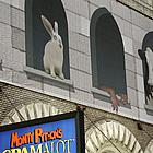 spamalot review 13