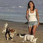 jennifer aniston dogs 02