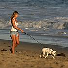jennifer aniston dogs 11
