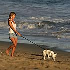 jennifer aniston dogs 13