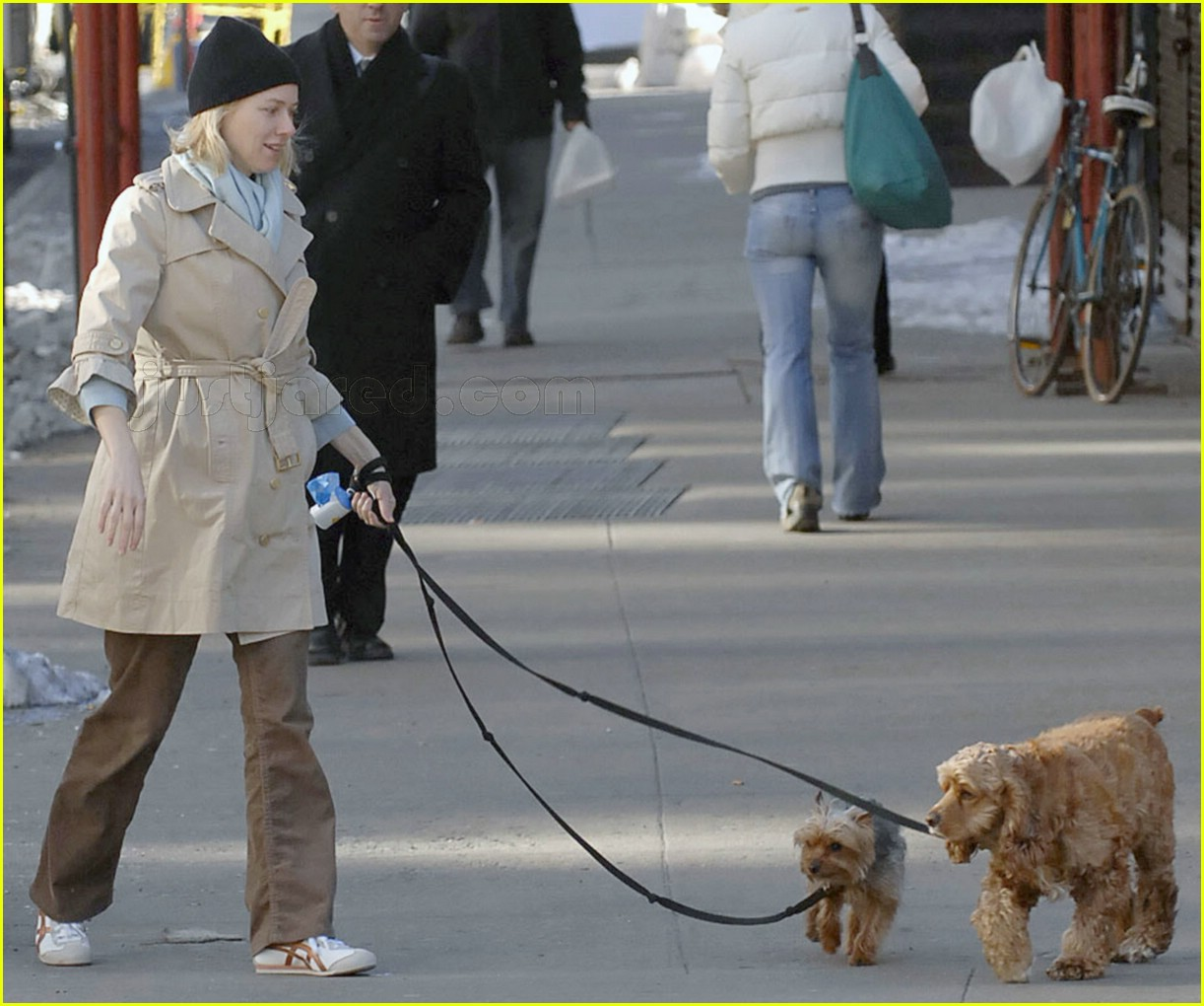 naomi watts dogs all tied up 02