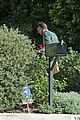 ben affleck mailbox 05