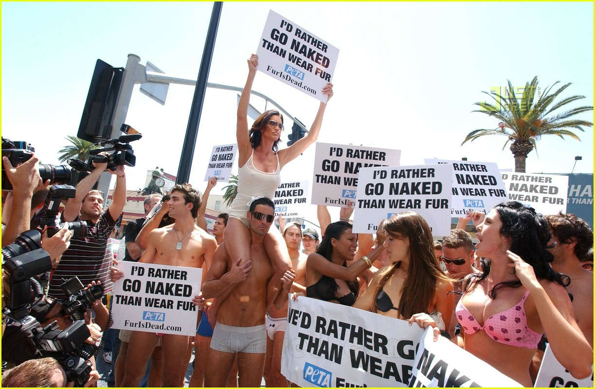janice dickinson naked models 15