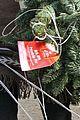 rebecca romijn jerry oconnell christmas tree 01