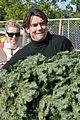 rebecca romijn jerry oconnell christmas tree 30