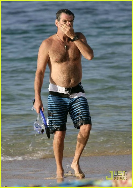 pierce brosnan shirtless 25