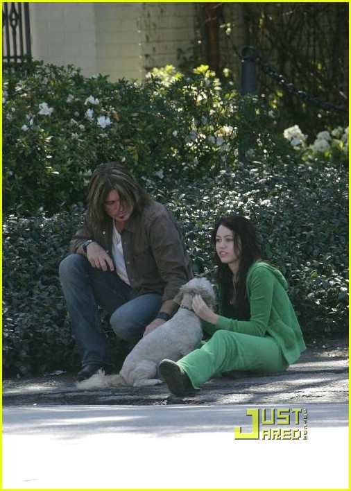 miley cyrus stray dog 22961771