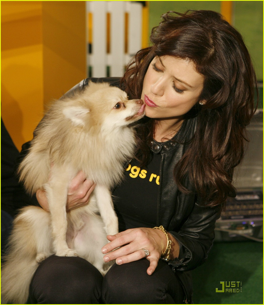 kate walsh dogs rule 07915821