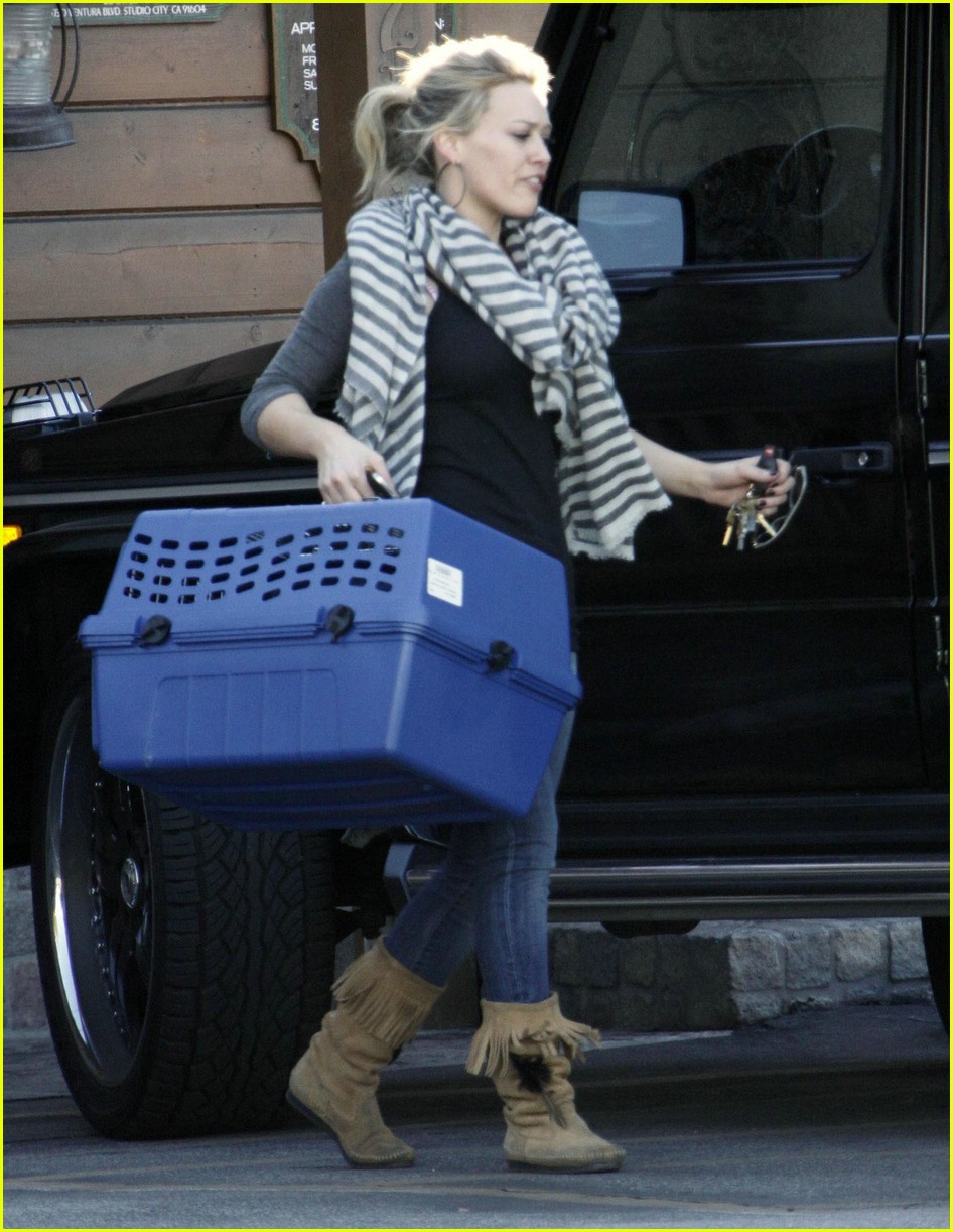 hilary duff puppy 091661961