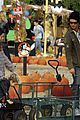 kingston zuma rossdale pick pumpkins 09