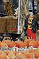 kingston zuma rossdale pick pumpkins 13