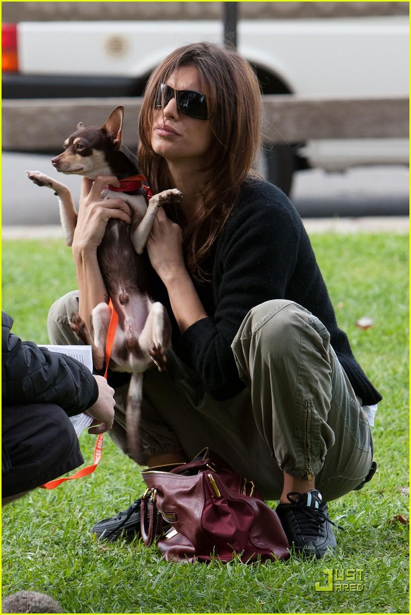 elisabetta canalis adopts a dog 012400301