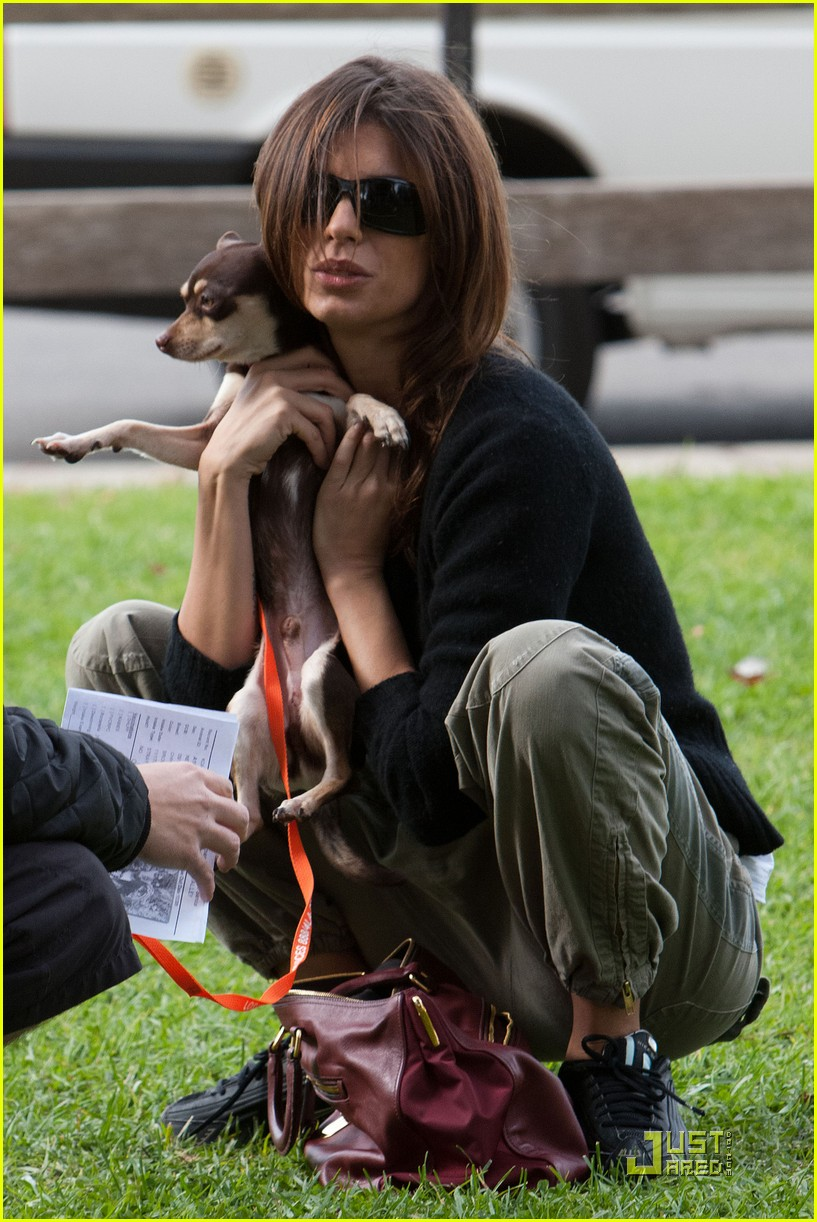 elisabetta canalis adopts a dog 19