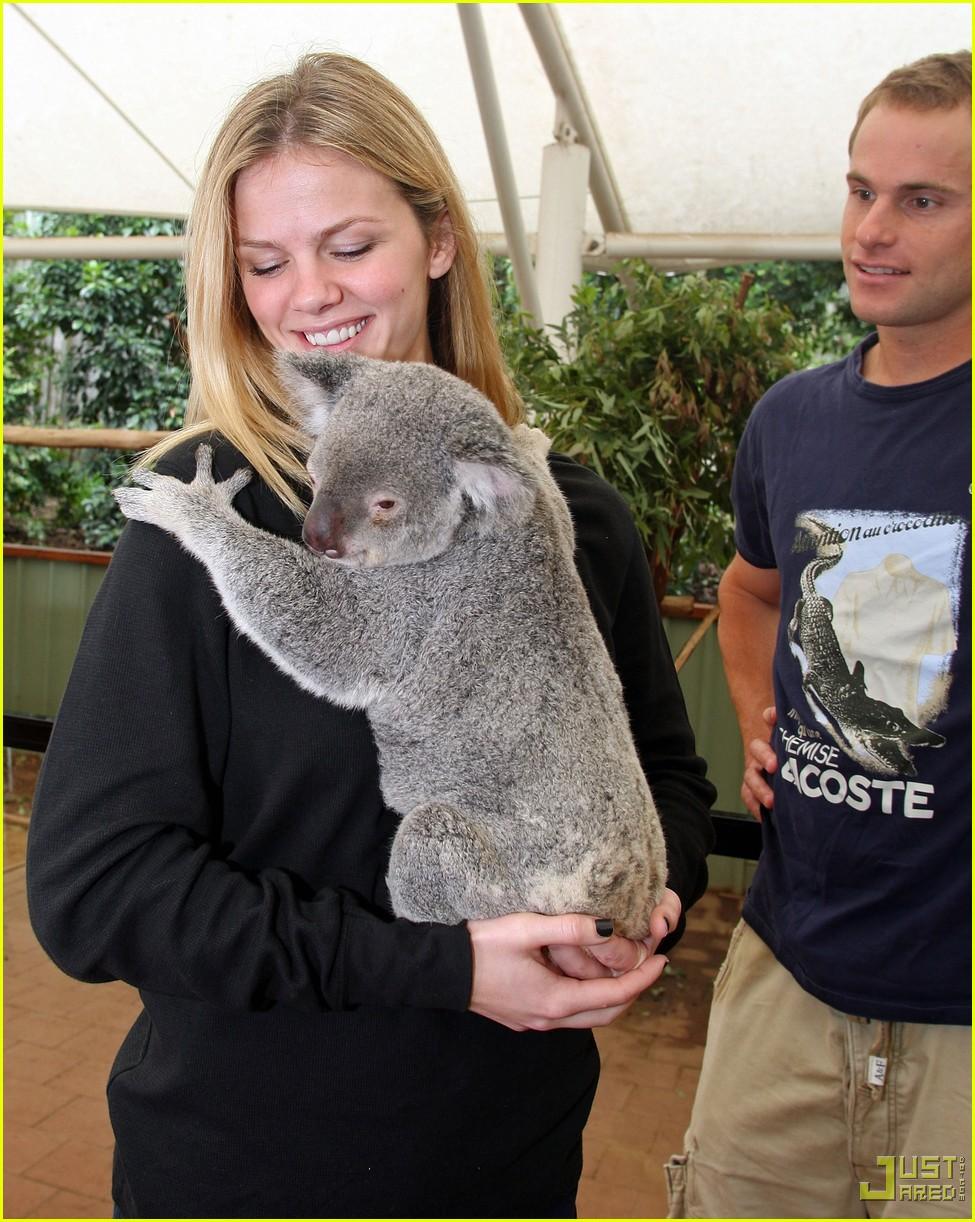 andy roddick brooklyn decker koala couple 12