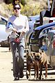 jessica biel walking dogs 06