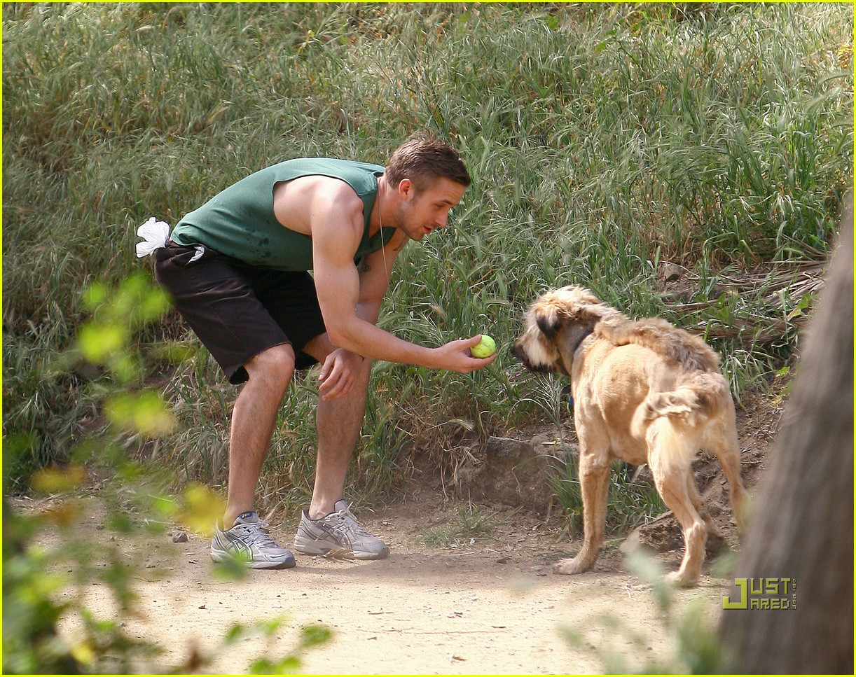 ryan gosling sleeveless dog 11