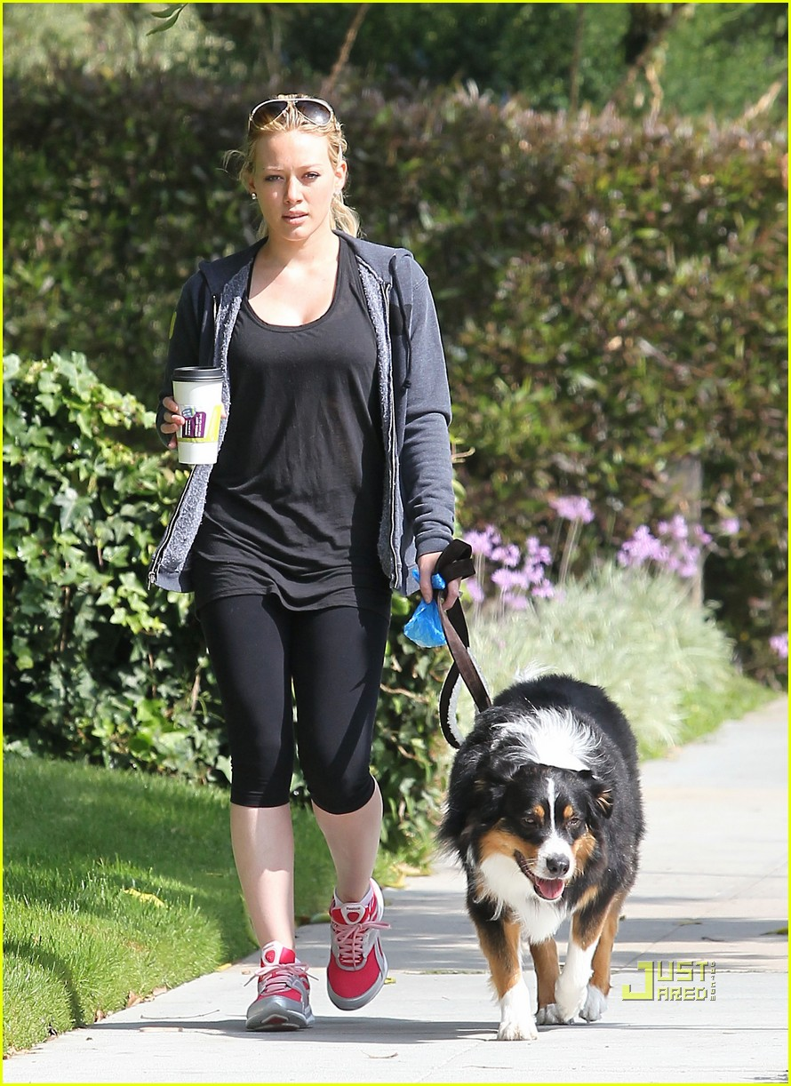 hilary duff dog 18