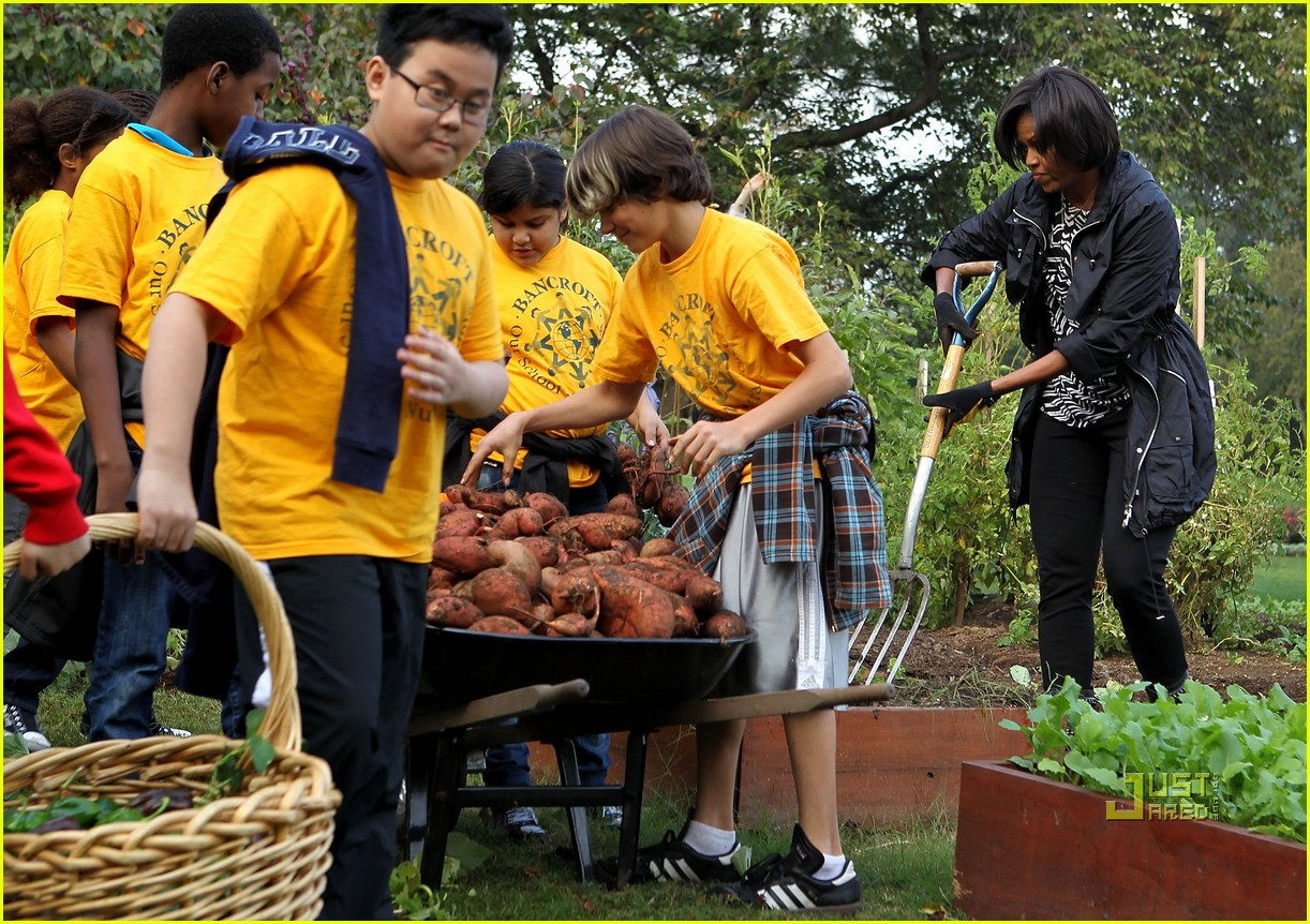 Full Sized Photo Of Michelle Obama White House Kitchen Garden Fall Harvest 08 Photo 2489251