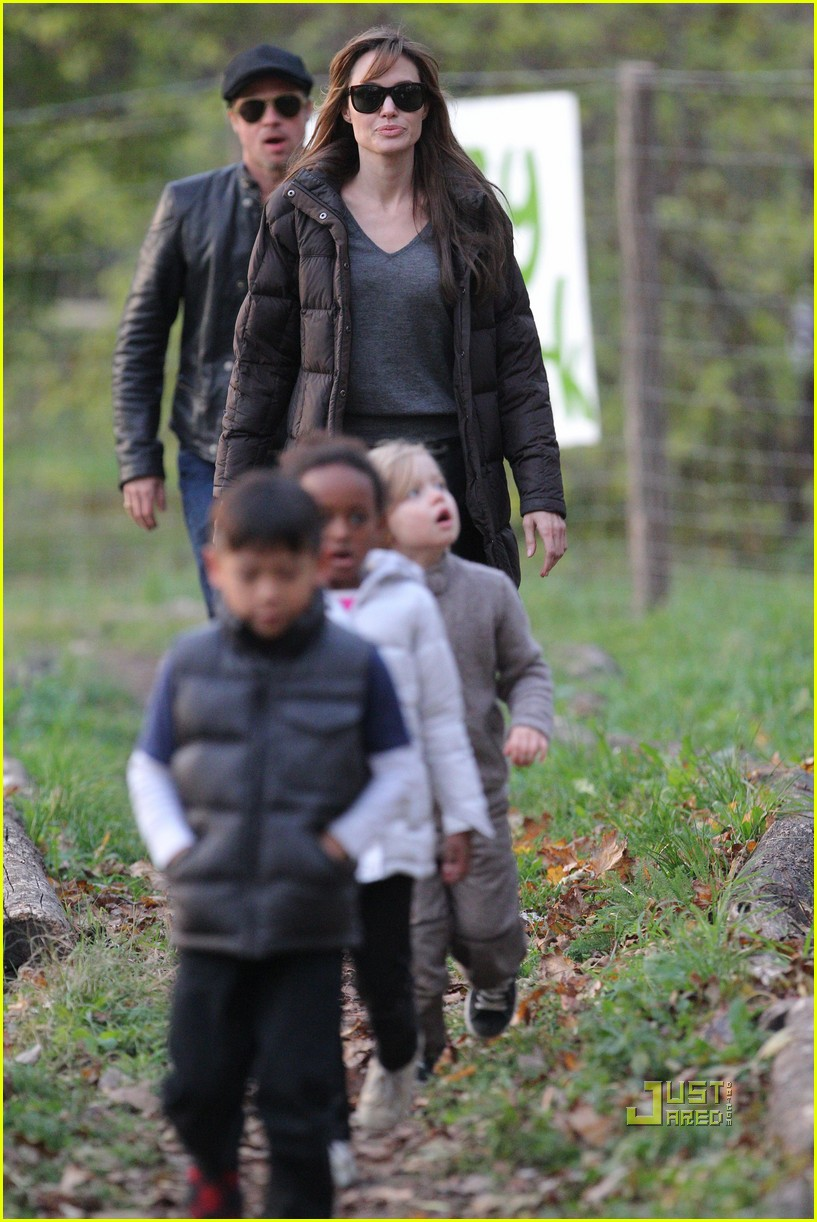 angelina jolie brad pitt park playtime with kids 102493056