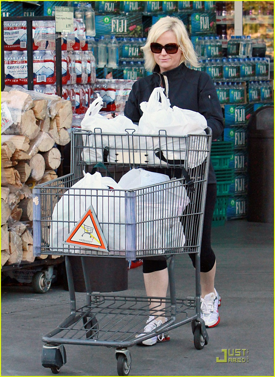 amy poehler walk with archie 042518489