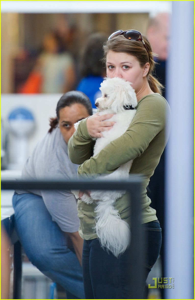 kelly clarkson lax puppy 01