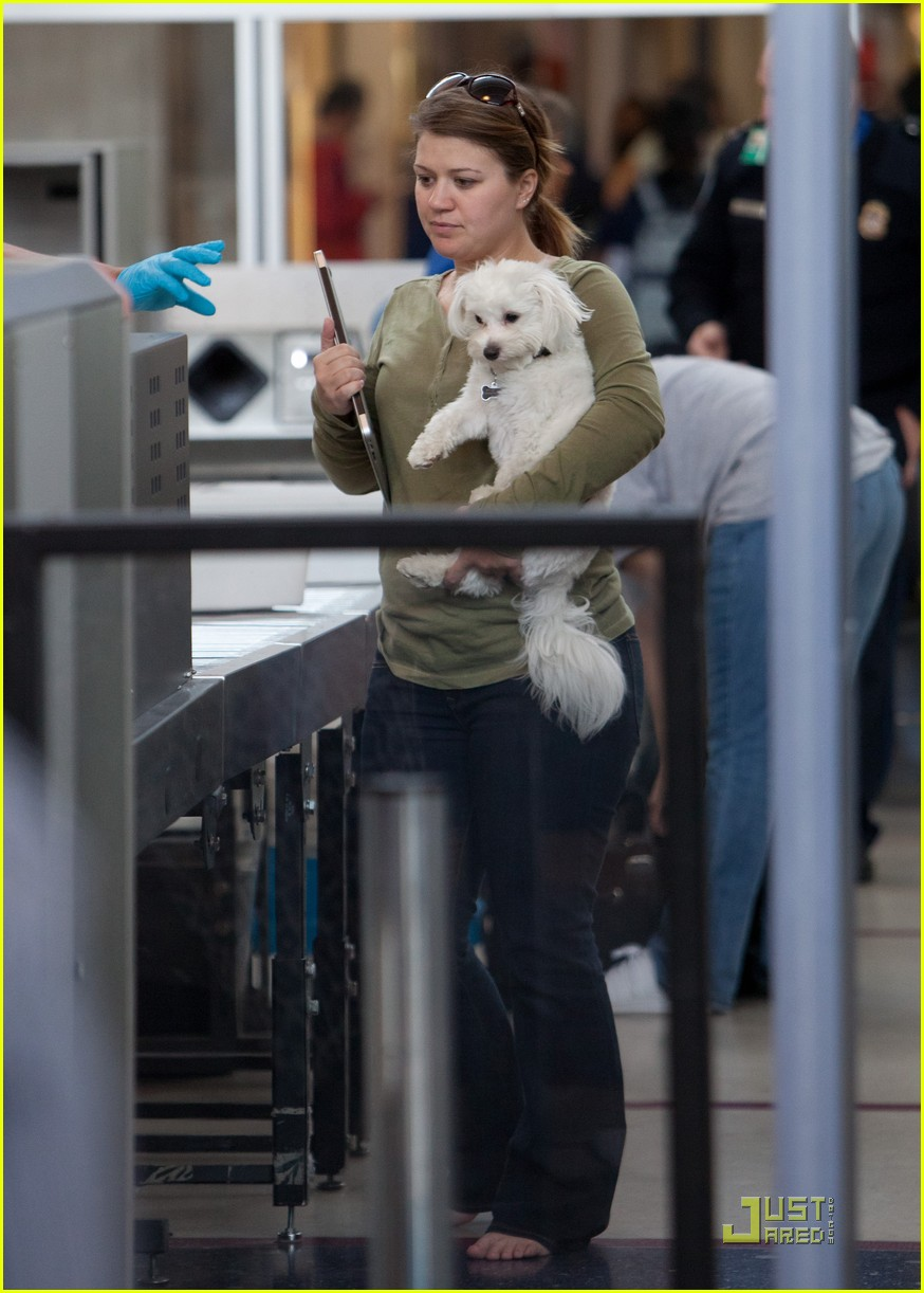 kelly clarkson lax puppy 03
