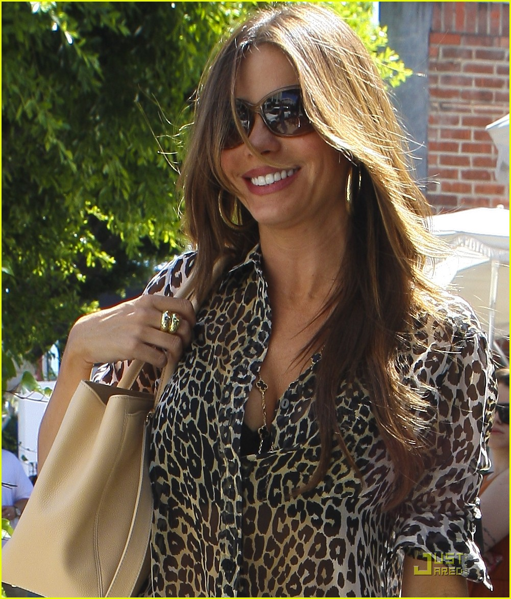 sofia vergara lunch nick loeb 022574209