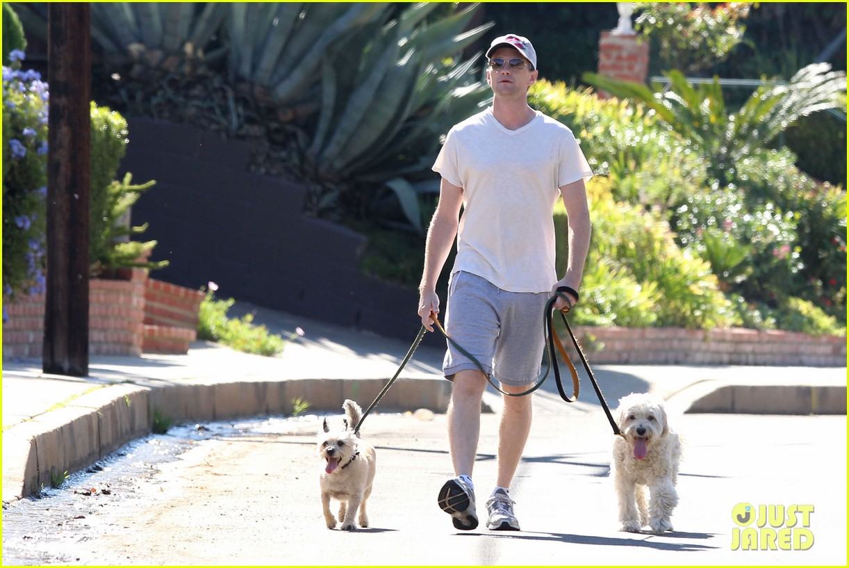 neil patrick harris dog walking 08