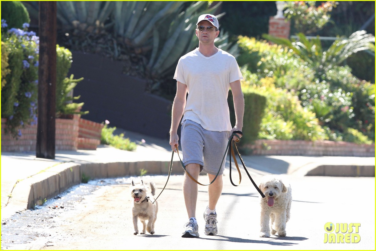 neil patrick harris dog walking 102585972
