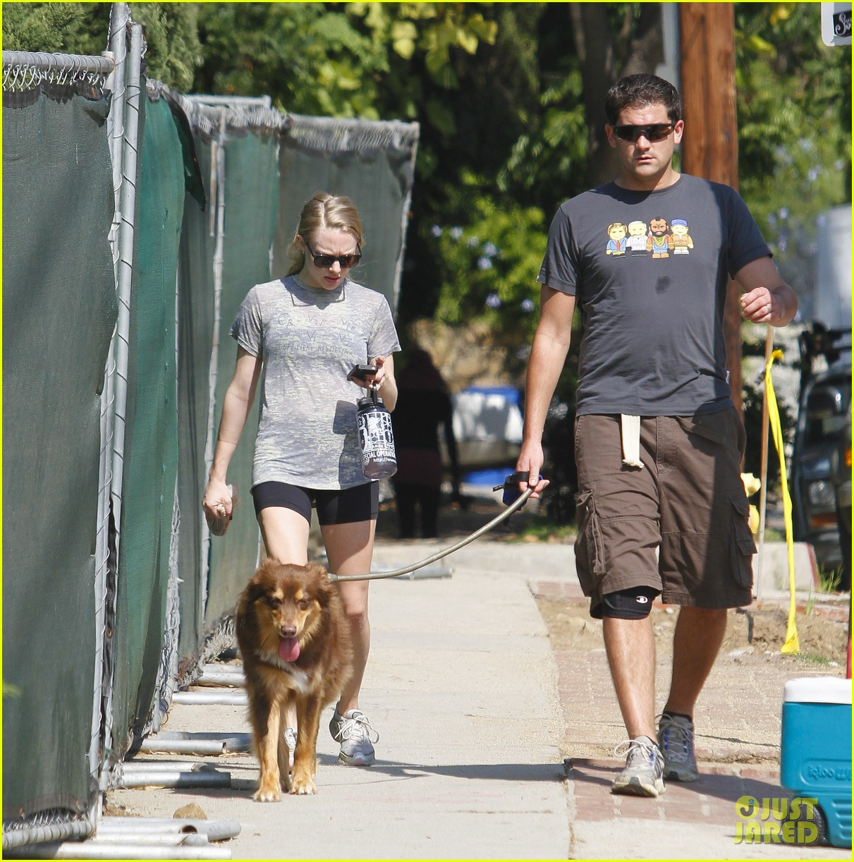 amanda seyfried dog walk friend 19