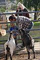 gwen stefani farm 07