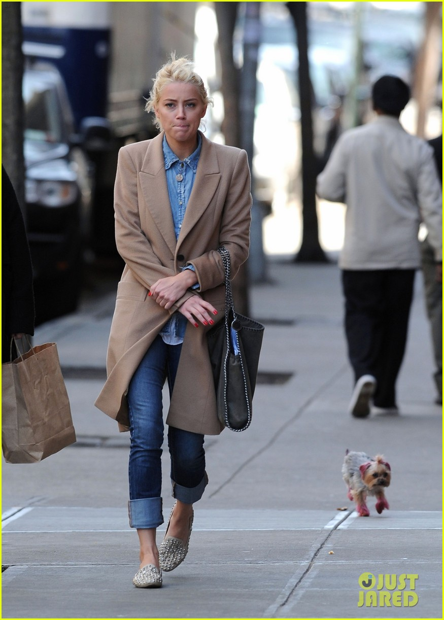 amber heard spy day with pink pooch 04
