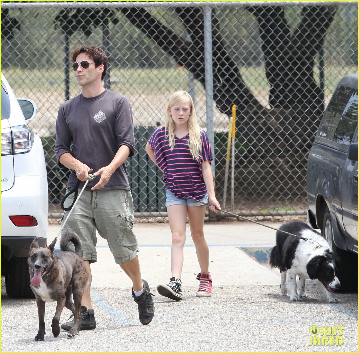 stephen moyer walking dogs with lilac 052669930