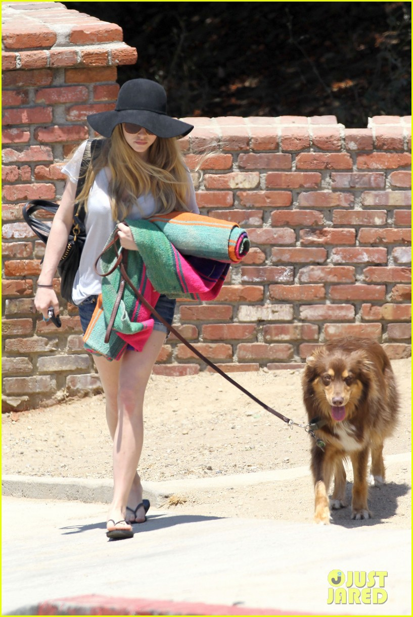 amanda seyfried park with flynn 19