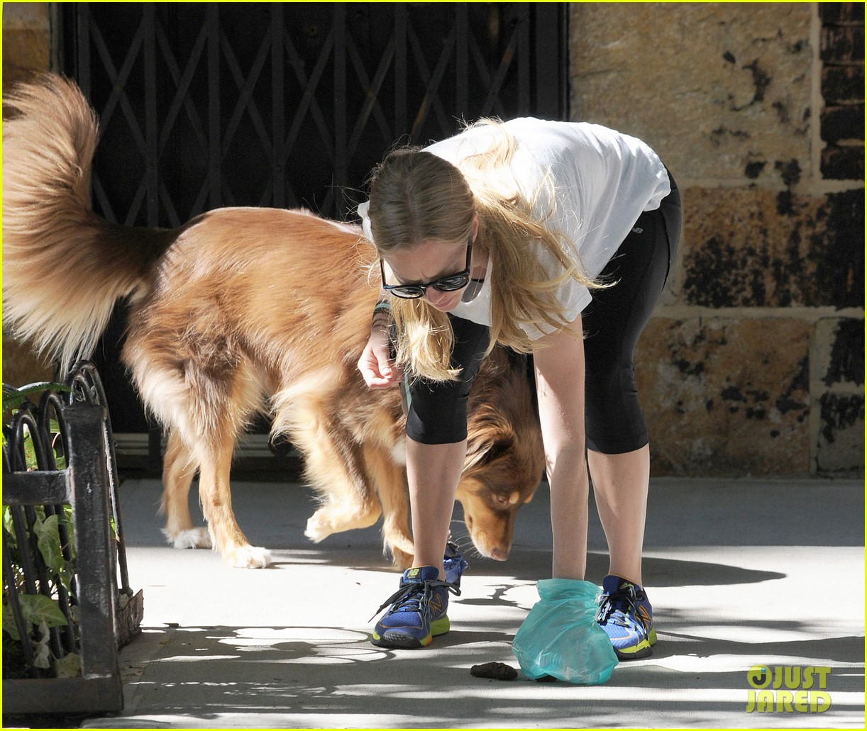 amanda seyfried responsible dog owner 06