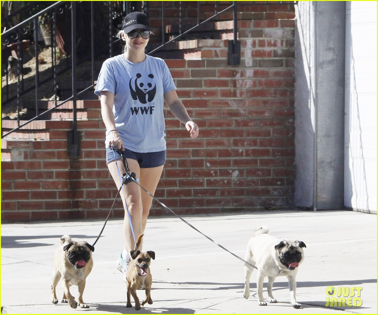 anna faris chris pratt strolling with baby jack 232730481