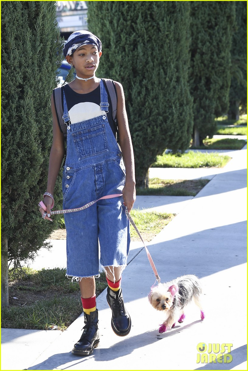 willow smith follow my fashion blog 01