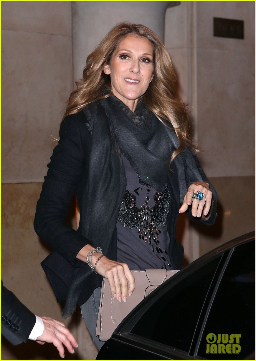 celine dion i took a chance with las vegas residency 22