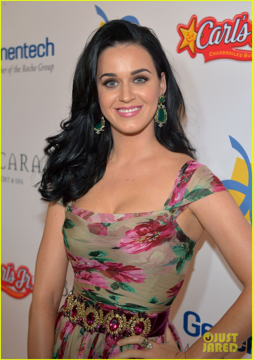 katy perry dream foundation celebration of dreams 062759249