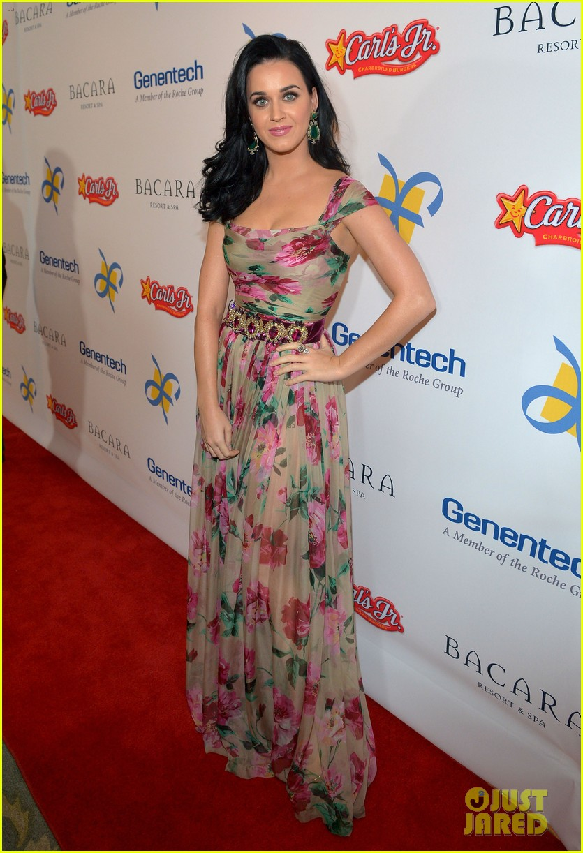 katy perry dream foundation celebration of dreams 11