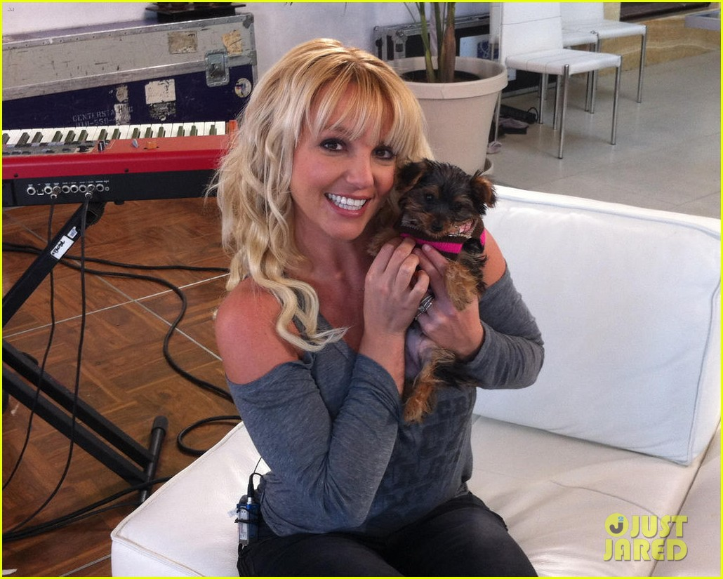 britney spears meet my new little baby girl hannah