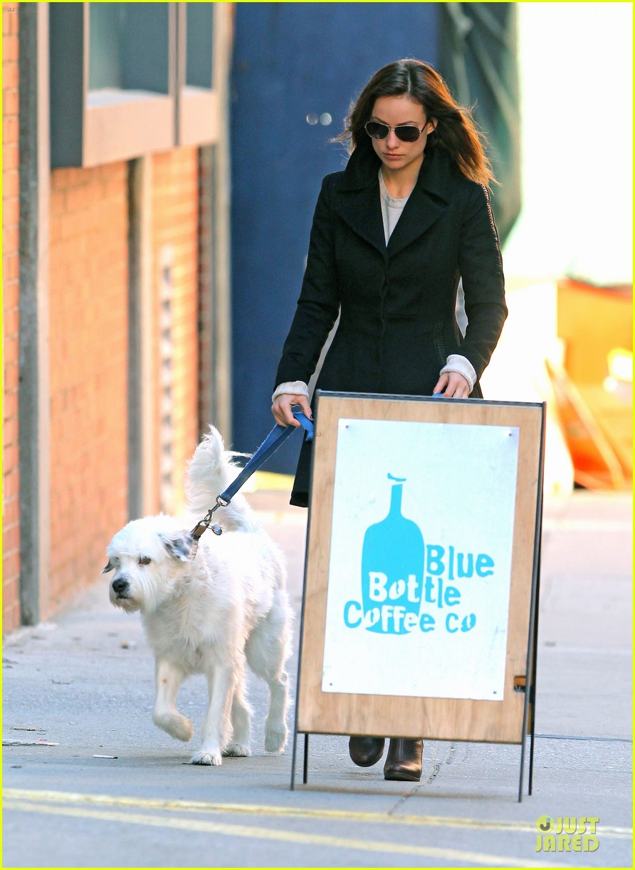 olivia wilde coffee run with paco 052759586