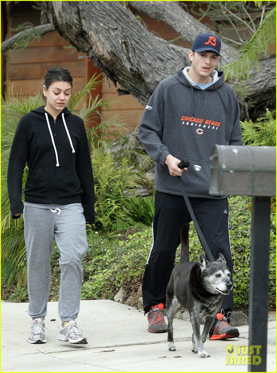 mila kunis ashton kutcher dog walk 142774901