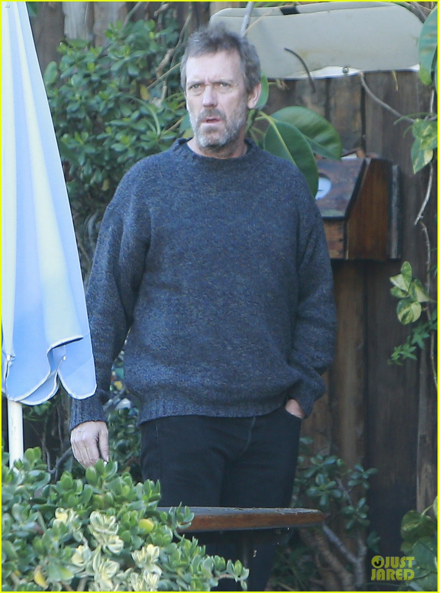 the oranges director fought for hugh laurie 042783327