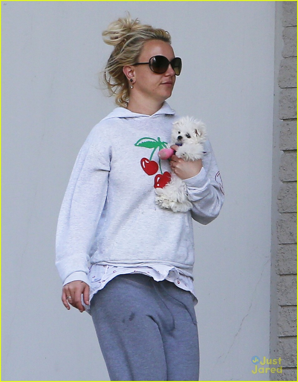 britney spears animal hospital with hannah and the boys 04