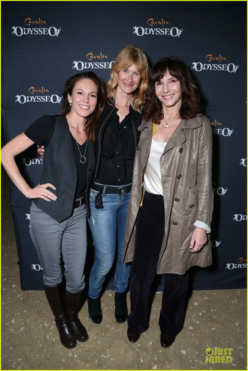 diane lane cavalia odysseo opening after divorce 05