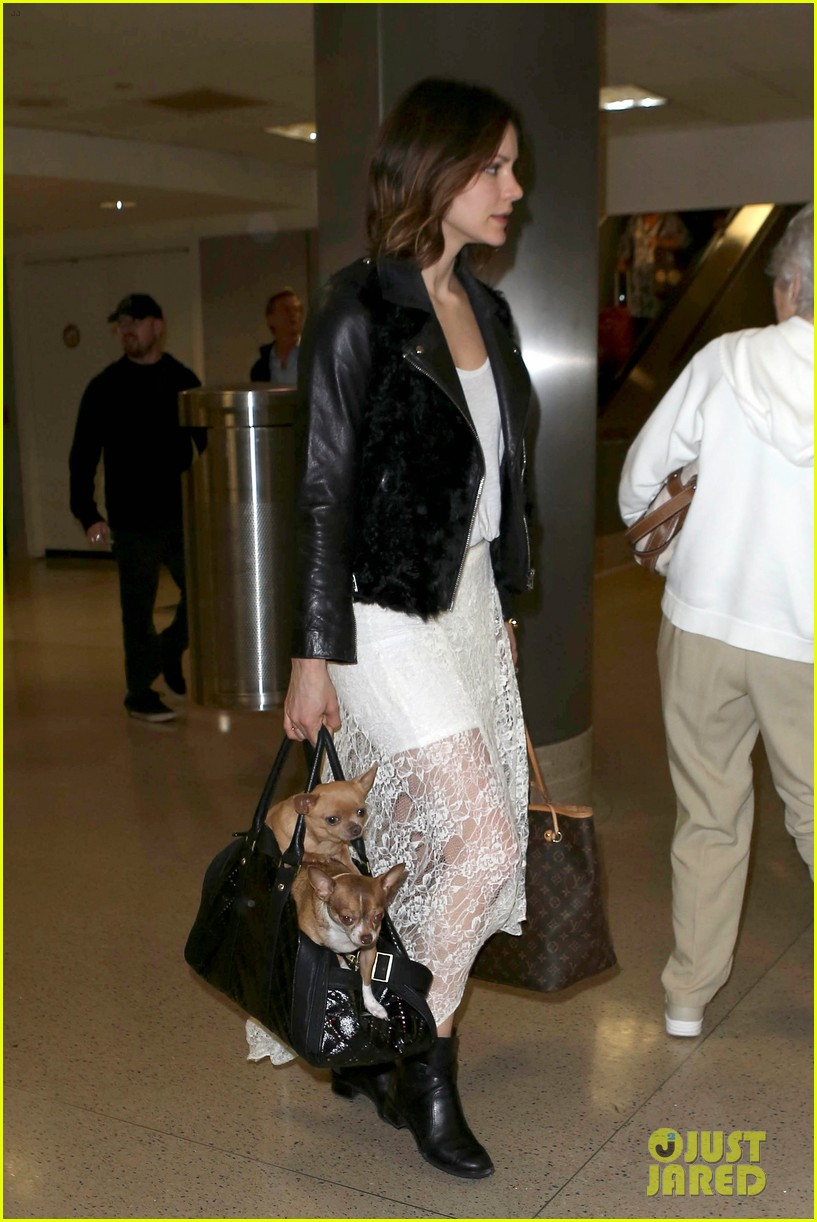 katharine mcphee double puppy purse at airport 02