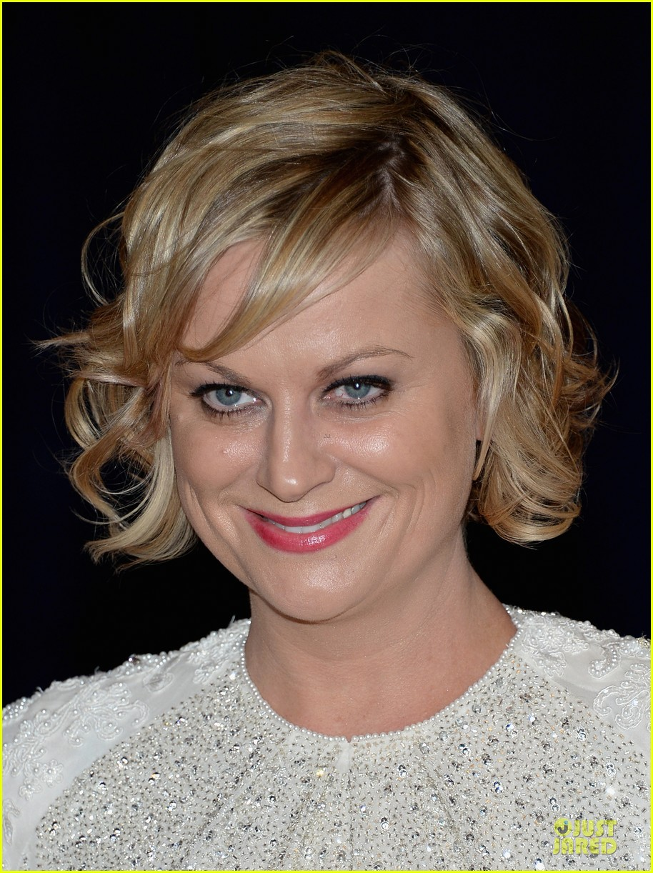 amy poehler white house correspondents dinner 2013 red carpet 022859477